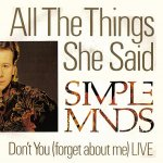 Simple Minds - All the things she said