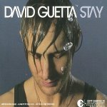 David Guetta feat Chris Willis - Stay